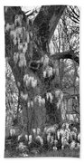 Wysteria Tree In Black And White Beach Towel