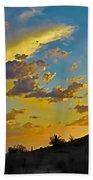 Y Cactus Sunset 10 Beach Towel