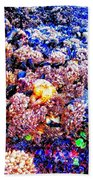Yachats Oregon - Low Tide Treasures Beach Towel