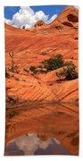 Yant Flat Canyon Reflections Beach Towel