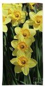 Yellow And Orange Daffodil  #2 Beach Towel