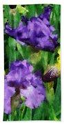 Yellow And Purple Irises Beach Towel