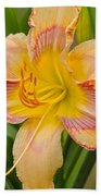 Yellow And Red Lily Beach Towel