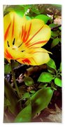 Yellow And Red Tulip Beach Towel