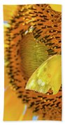 Yellow Butterfly And Sunflower Beach Towel