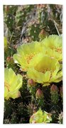 Yellow Cactus Blooms Beach Towel