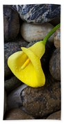 Yellow Calla Lily On Rocks Beach Towel