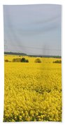Yellow Canola Field Beach Towel