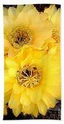 Yellow Cereus Beach Towel