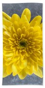 Yellow Chrysanthemum Flower Beach Towel