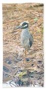 Yellow Crowned Night Heron Along The Tidal Creek Beach Towel