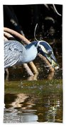 Yellow Crowned Night Heron Catches A Crab Beach Towel