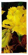 Yellow Daffodils 6 Beach Towel