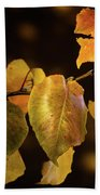 Yellow Fall Leaves Beach Towel