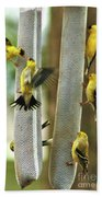 Yellow Finch Feeding Frenzy Beach Towel