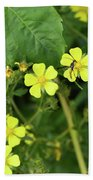 Yellow Flower And A Black Bug  Beach Towel