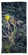 Yellow Flower In Dry Autumn Grass Beach Towel