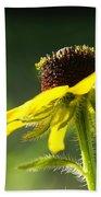 Yellow Flower In Sunlight Beach Towel