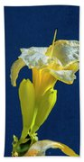 Yellow Glue Blue #f9 Beach Towel