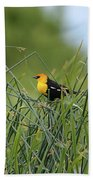Yellow-headed Blackbird Beach Towel