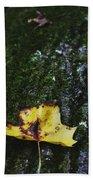Yellow Leaf On Mossy Tree Beach Towel