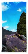 Yellow Lichen Beach Towel