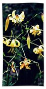 Yellow Lilies In Fort Tryon Park Beach Towel