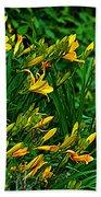 Yellow Lily Flowers Beach Towel