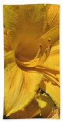 Yellow Lily Shines Brightly  Beach Towel