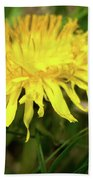 Yellow Mountain Flower's Petals Beach Towel