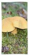 Yellow Mushroom Beach Sheet