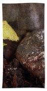 Yellow Mushroom Beach Towel
