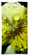 Yellow Pansy Beach Towel