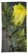 Yellow Prickly Pear Cactus Bloom Beach Towel