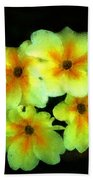 Yellow Primrose 5-25-09 Beach Towel