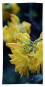 Yellow Rhododendron Flower Beach Towel