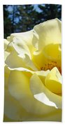 Yellow Rose Garden Landscape 3 Roses Art Prints Baslee Troutman Beach Towel