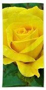 Yellow Rose Beach Towel