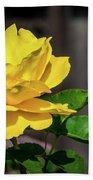 Yellow Rose Of Los Gatos Beach Towel