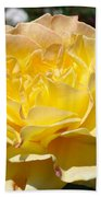 Yellow Rose Sunlit Summer Roses Flowers Art Prints Baslee Troutman Beach Towel