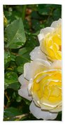 Yellow Roses Beach Towel