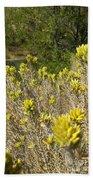 Yellow Sage Flower Beach Towel