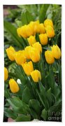 Yellow Spring Tulips Beach Towel