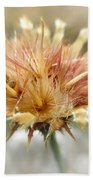 Yellow Star Thistle Beach Sheet by Valerie Anne Kelly