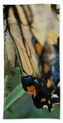 Yellow Swallow Beach Towel