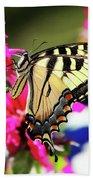 Yellow Swallowtail     Beach Towel