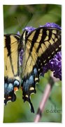 Yellow Swallowtail Butterfly Two Beach Towel