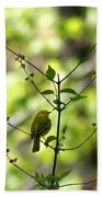 Yellow Warbler In A Tree 2 Beach Towel