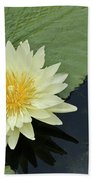 Yellow Water Lily With Bud Nymphaea Beach Towel by Heiko Koehrer-Wagner