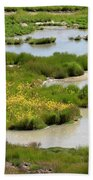 Yellow Wildflowers At Mud Volcano Area In Yellowstone National Park Beach Towel